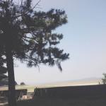 仁尾の海☆