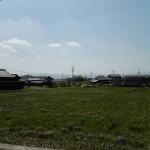 レンゲ畑☆